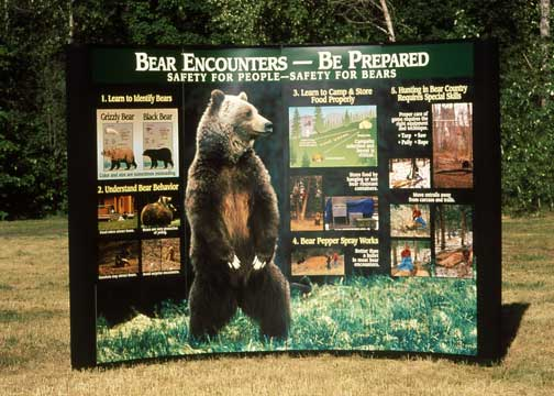 Black Bear / Grizzly Bear displays