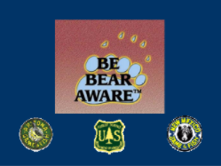 About Be Bear Aware Campaign Powerpoint